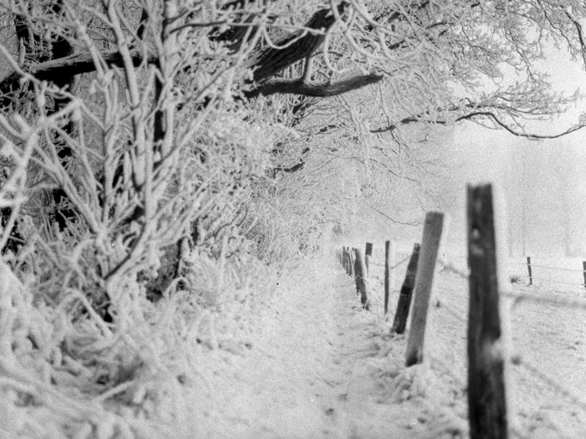 Feluy sous la neige …