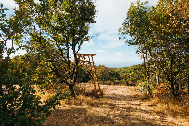 Gîte, Propriété d'exception Domaine Merlac Sud de la France, Accalmie Studio